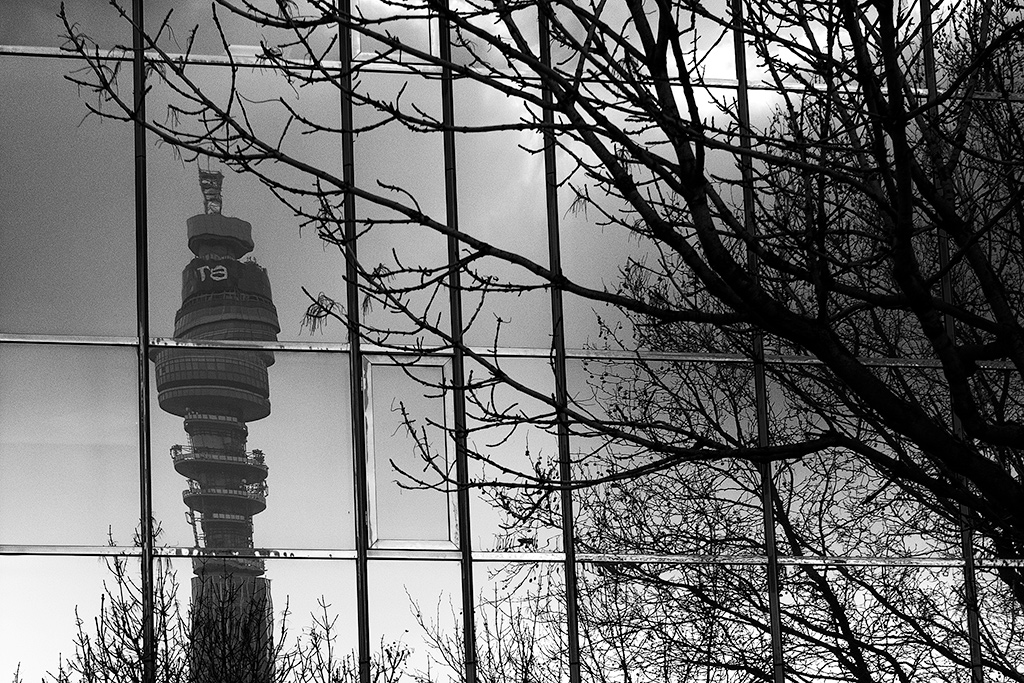 Telecom tower and tree branches reflected in window.